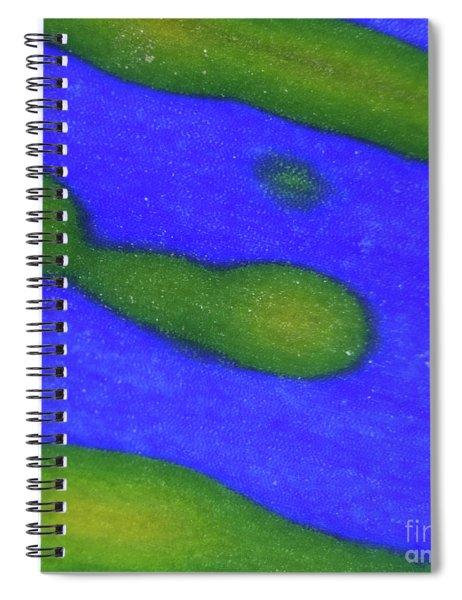 Color Transformation Of Cineraria Petal Spiral Notebook