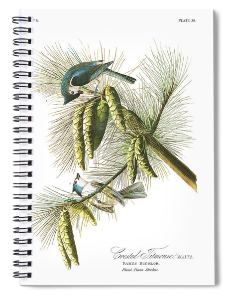 Crested Titmouse Spiral Notebook
