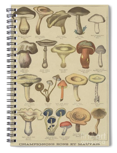 Edible And Poisonous Mushrooms Spiral Notebook