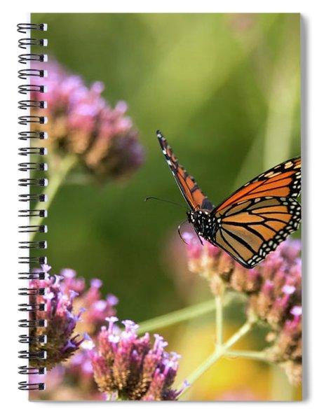 Flight Of The Monarch 1 Spiral Notebook
