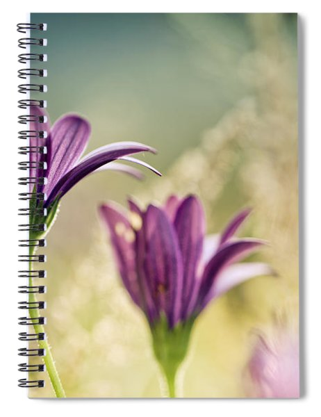 Flower On Summer Meadow Spiral Notebook
