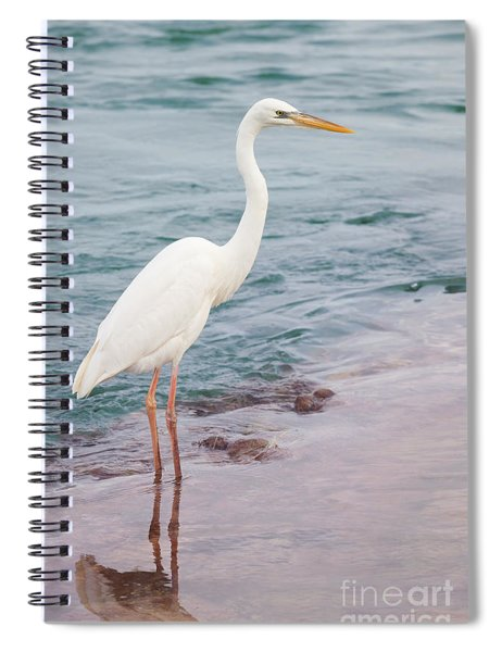 Great White Heron Spiral Notebook