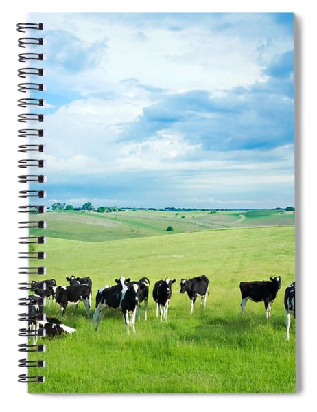 Happy Cows Spiral Notebook