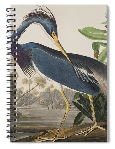 Louisiana Heron  Spiral Notebook