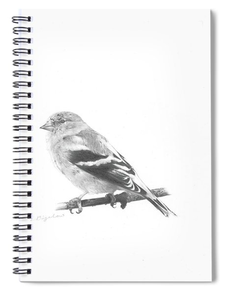 Orbit No. 6 Spiral Notebook