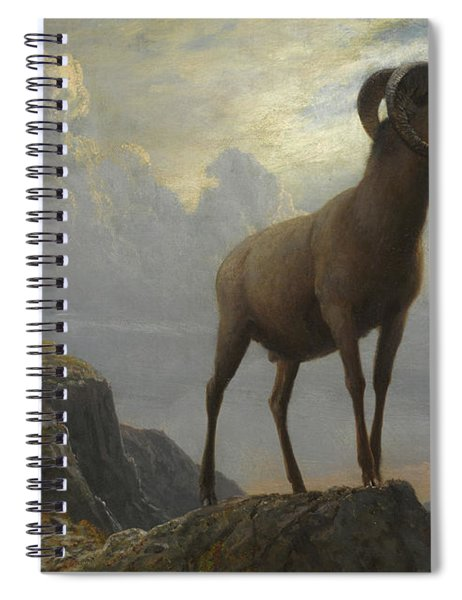 Rocky Mountain Sheep Spiral Notebook
