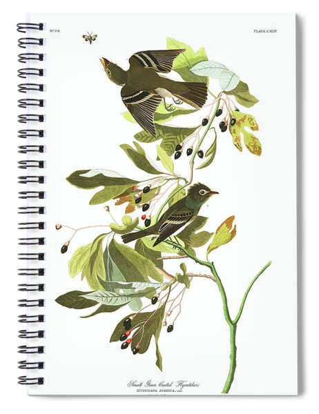 Small Green Crested Flycatcher Spiral Notebook