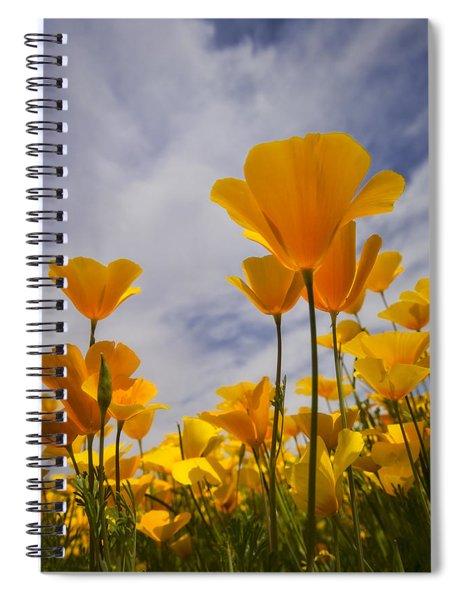 Springtime Poppies  Spiral Notebook