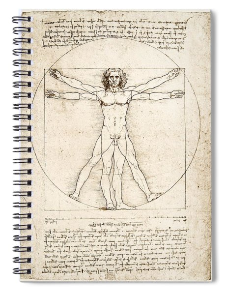 The Proportions Of The Human Figure Spiral Notebook