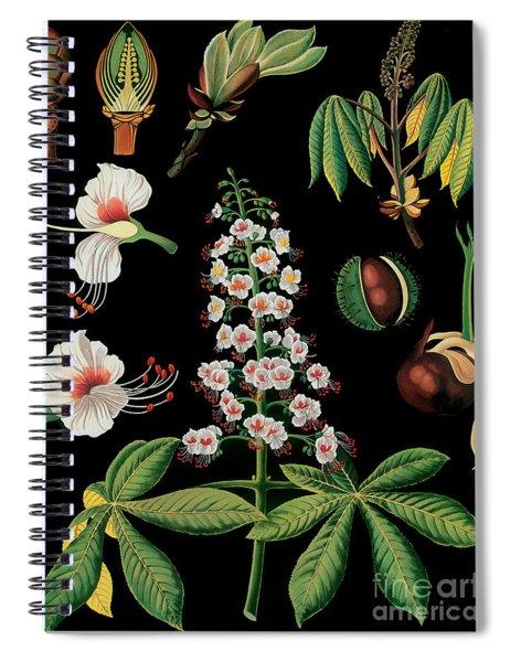 Vintage Botanical Spiral Notebook