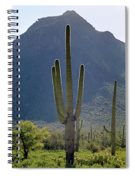 213858 Saguaro Cactus And Peak Az Spiral Notebook