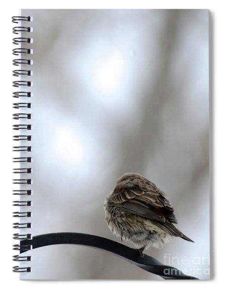 25 Degrees Spiral Notebook