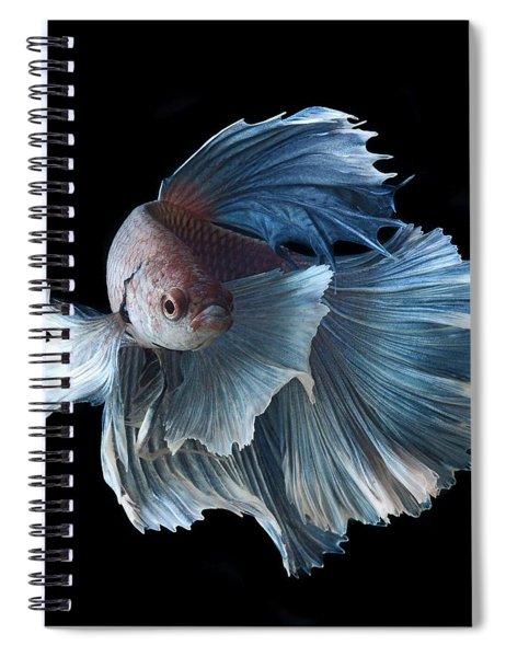 Betta Spiral Notebook