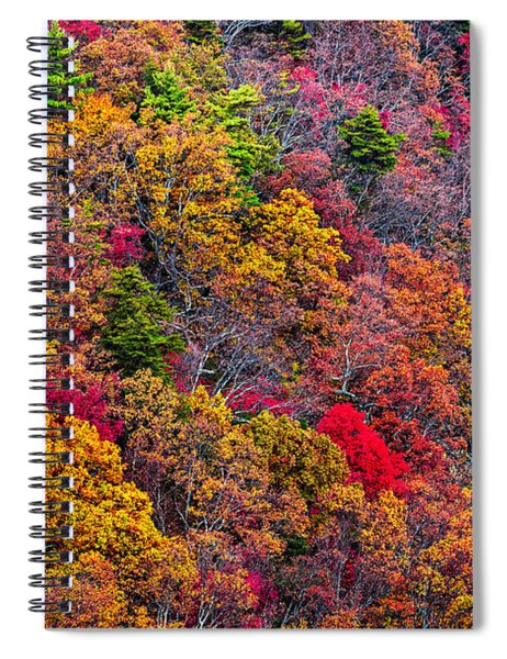 Fall Colors Spiral Notebook