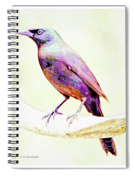 Great-tailed Grackle Spiral Notebook
