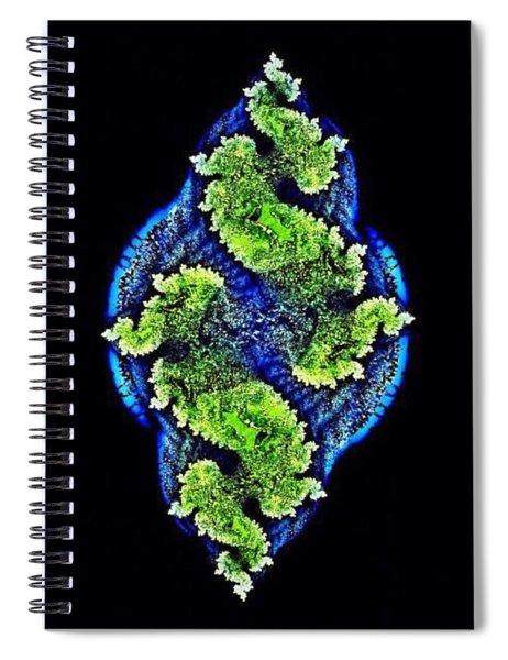 Tautological Fractals Spiral Notebook