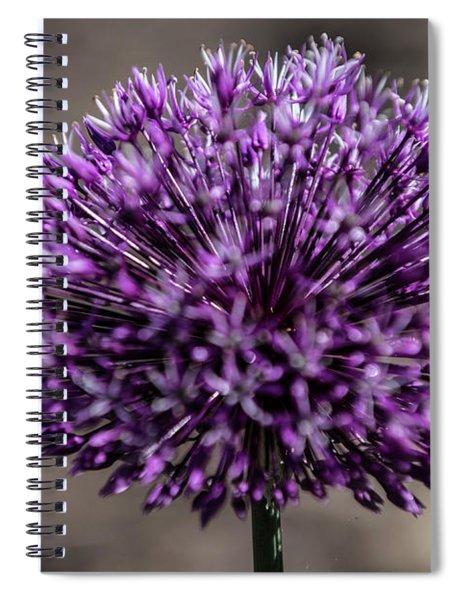 Fine Art  Spiral Notebook