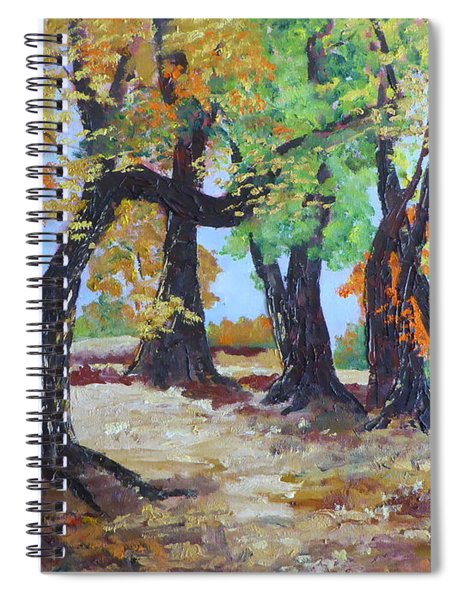 #35 Cottonwood Colors Spiral Notebook
