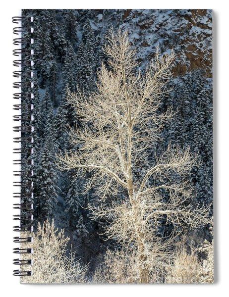 Colorado Winter Spiral Notebook
