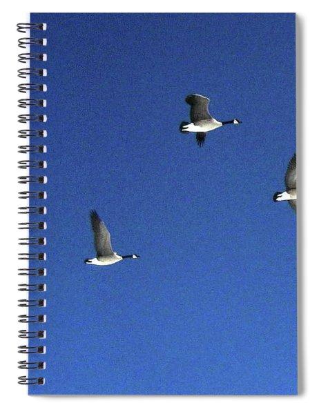 4 Geese In Flight Spiral Notebook