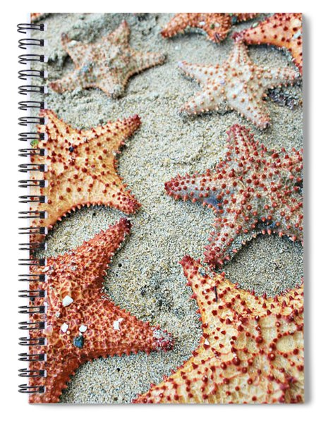 Loyda's Point Of View Spiral Notebook
