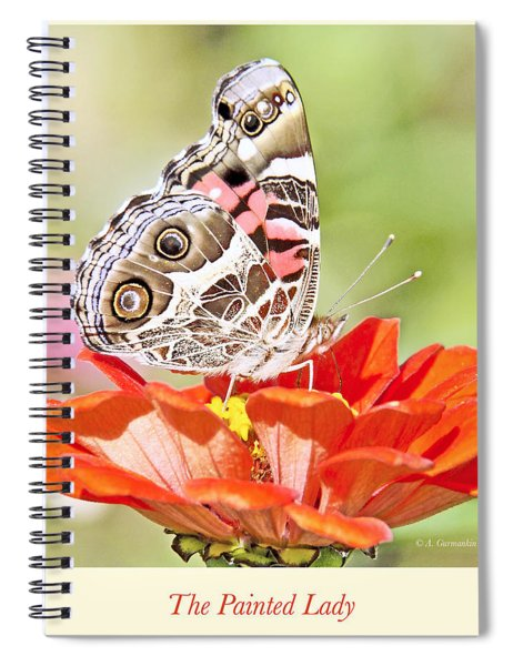 Painted Lady Butterfly On Zinnia Flower Spiral Notebook
