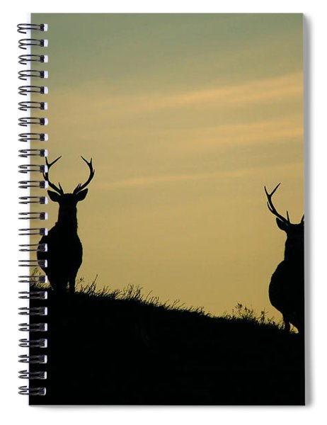 Red Deer Stags  Spiral Notebook