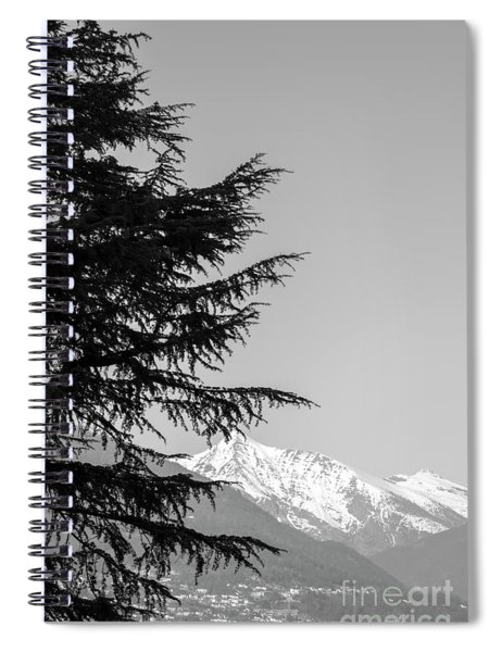 Tree And Mountain Spiral Notebook