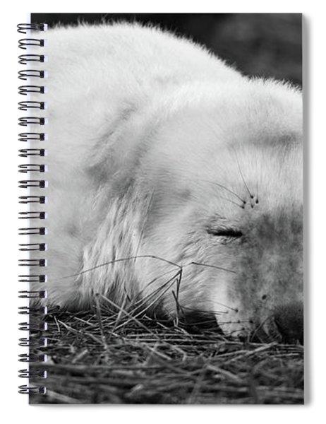 40 Winks Spiral Notebook