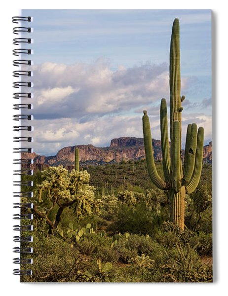 Sonoran Desert  Spiral Notebook