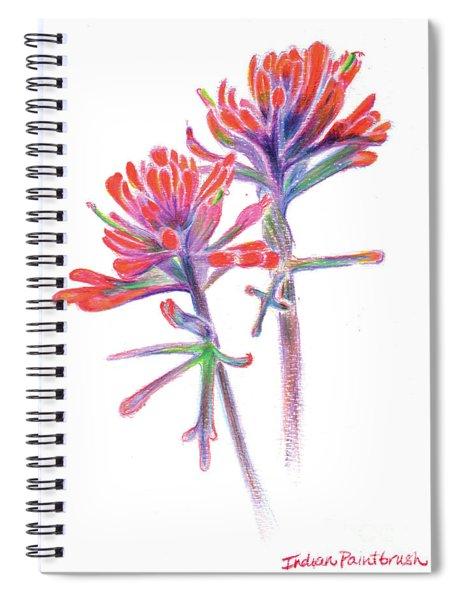 5x7paintbrush Spiral Notebook