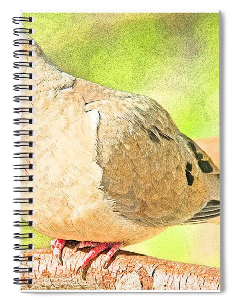 Mourning Dove Animal Portrait Spiral Notebook