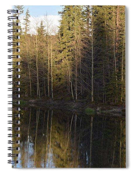 Shadow Reflection Kiddie Pond Divide Co Spiral Notebook