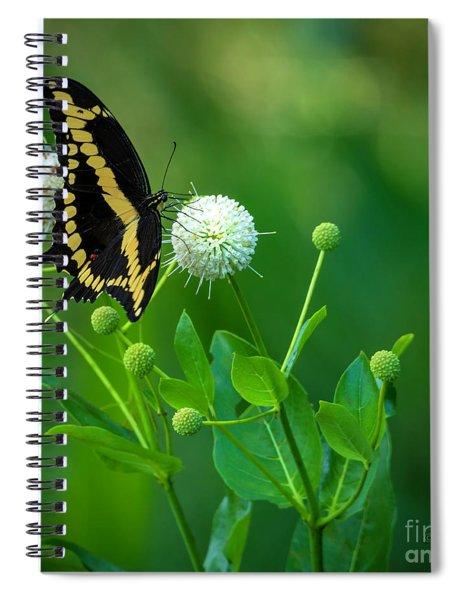 A Beautiful Day Spiral Notebook