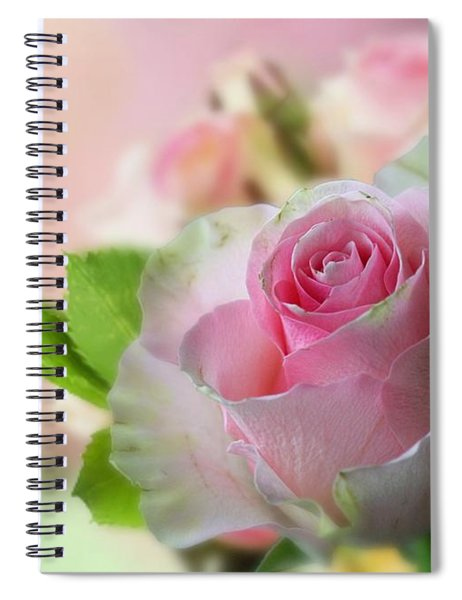 A Beautiful Rose Spiral Notebook