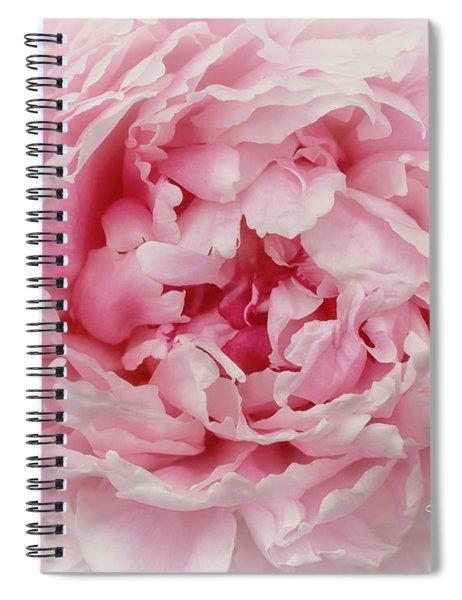 A Beauty At Close Range Spiral Notebook