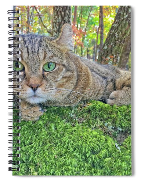 A Bed Of Moss Spiral Notebook