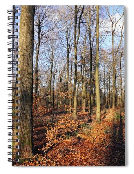 A Beech Woodland Autumn Uk  Spiral Notebook