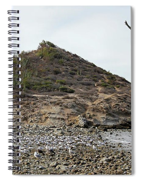 A Brown Pelican Does A Flyby Of A Cactus Covered Desert Island  Spiral Notebook