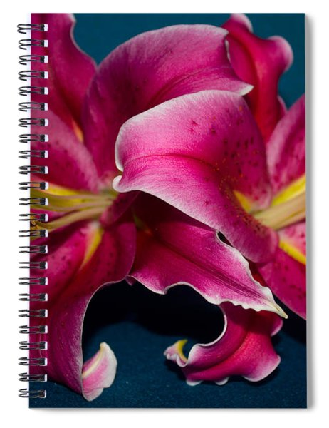 A Bunch Of Beauty Floral Spiral Notebook