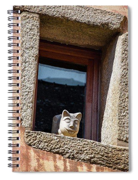 A Cat On Hot Bricks Spiral Notebook