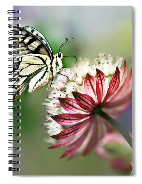 A Delicate Touch Spiral Notebook