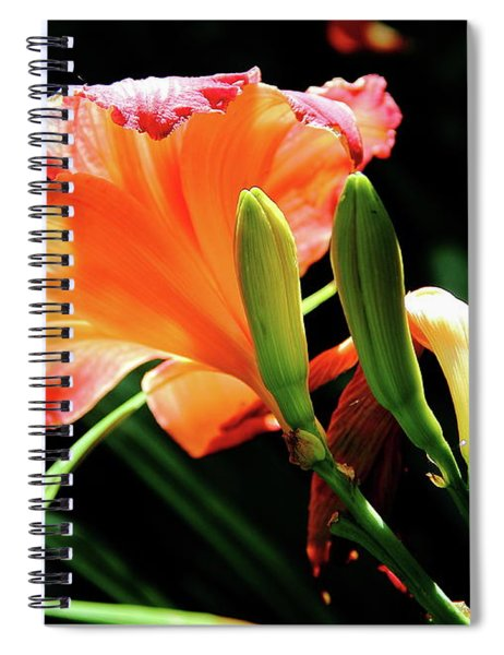 A Different View Lily Spiral Notebook