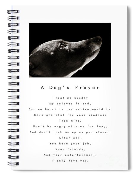 A Dog's Prayer In White  A Popular Inspirational Portrait And Poem Featuring An Italian Greyhound Spiral Notebook