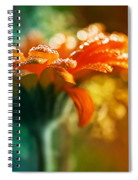 A Gift From God Spiral Notebook
