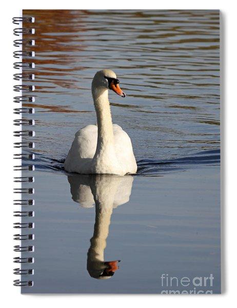 A Graceful Mute Swan Uk Spiral Notebook