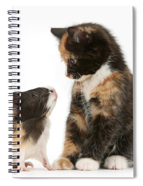 A Guinea For Your Thoughts Spiral Notebook
