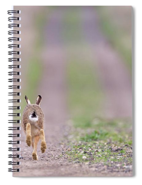 A Hare's Tail Spiral Notebook