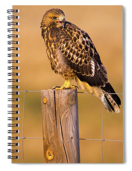 Spiral Notebook featuring the photograph A Hawk's Cry by John De Bord