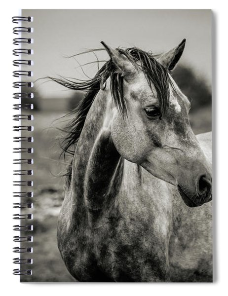 A Horse In Profile In Black And White Spiral Notebook
